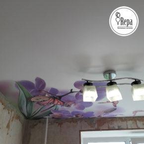 Натяжной потолок с фотопечатью репа